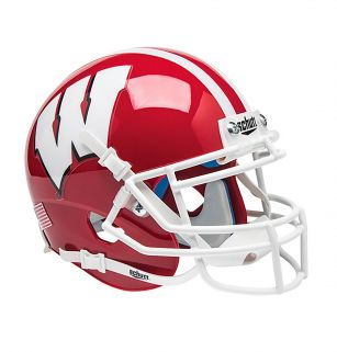 Wisconsin Badgers ALT 1