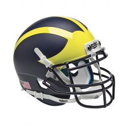 Michigan Wolverines ALT 1